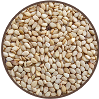 Seasame Seeds